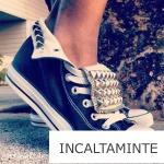 Incaltaminte-1